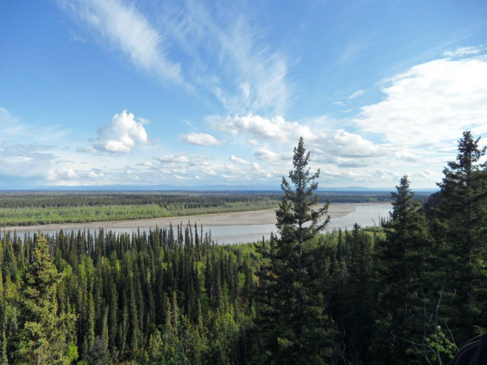 view of tanana from bluff.jpg