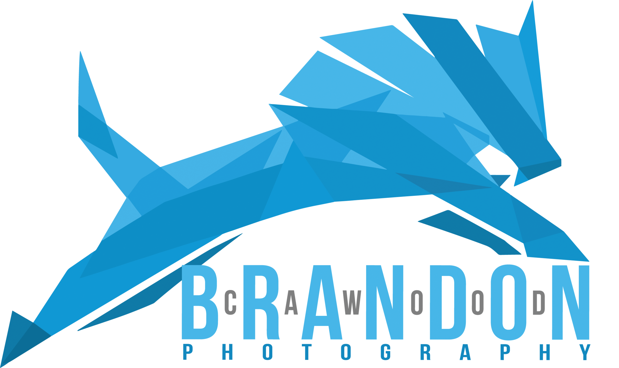 Brandon Cawood Photography Logo_full color.png