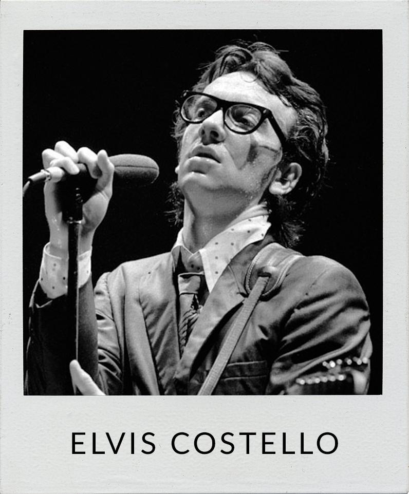 Elvis Costello photos