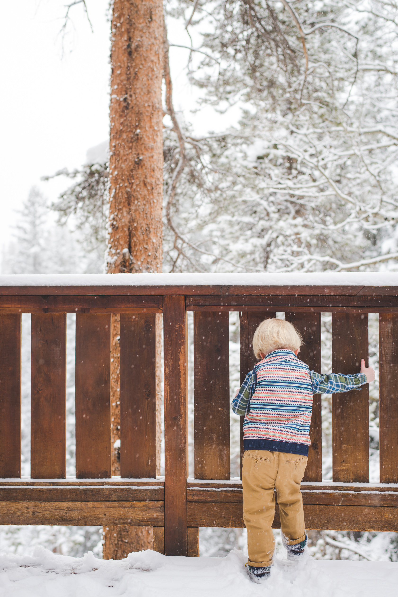 When in doubt (or when camera-shy), kick the snow off of the deck. It still makes for an adorable photo!