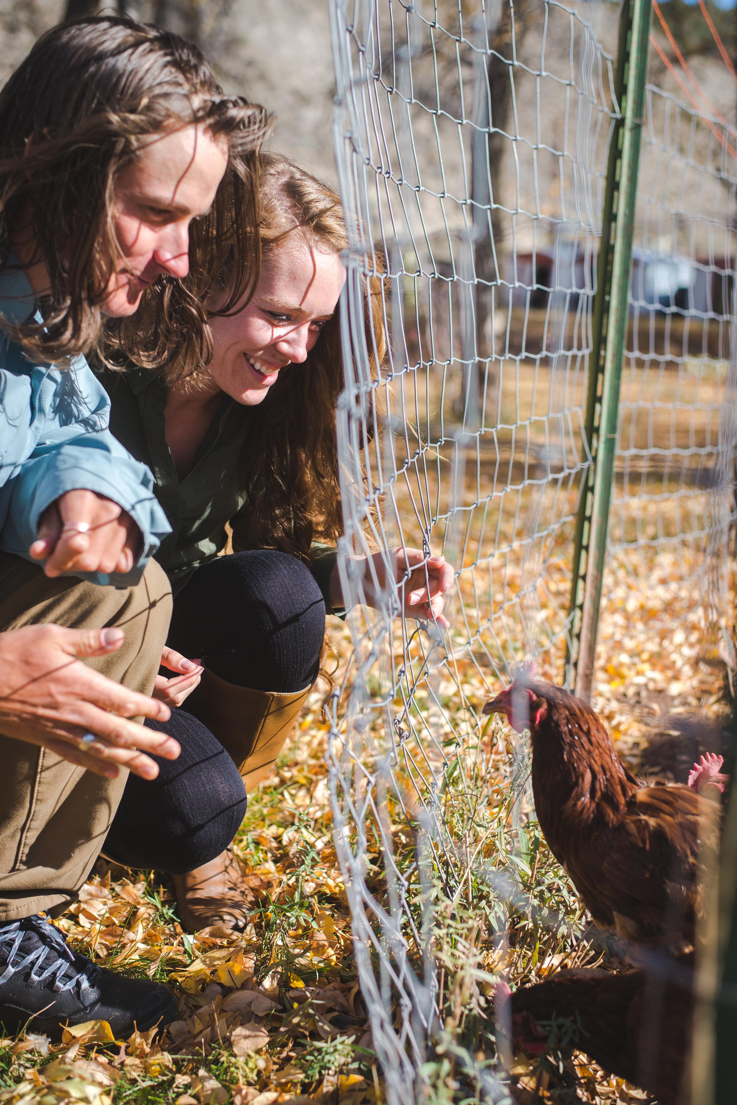 engagement session colorado farm