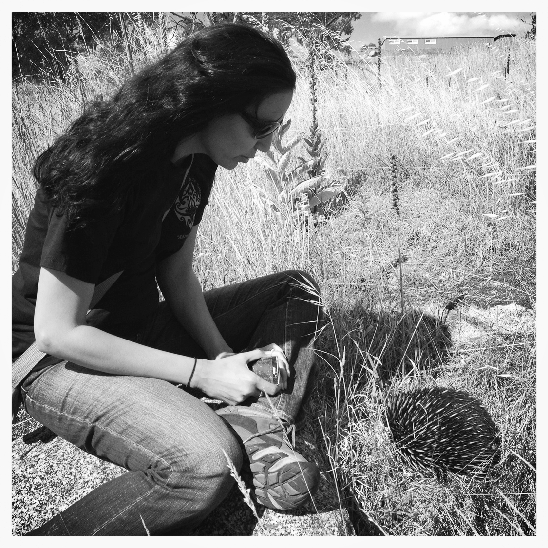 Giselle with  Tachyglossus aculeatus  (short-beaked echidna) near Jindabyne, NSW