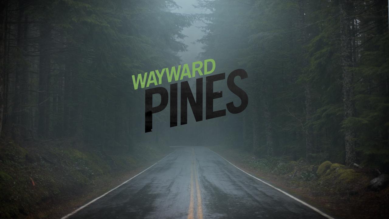 EE_wayPINES_BOARD4.jpg