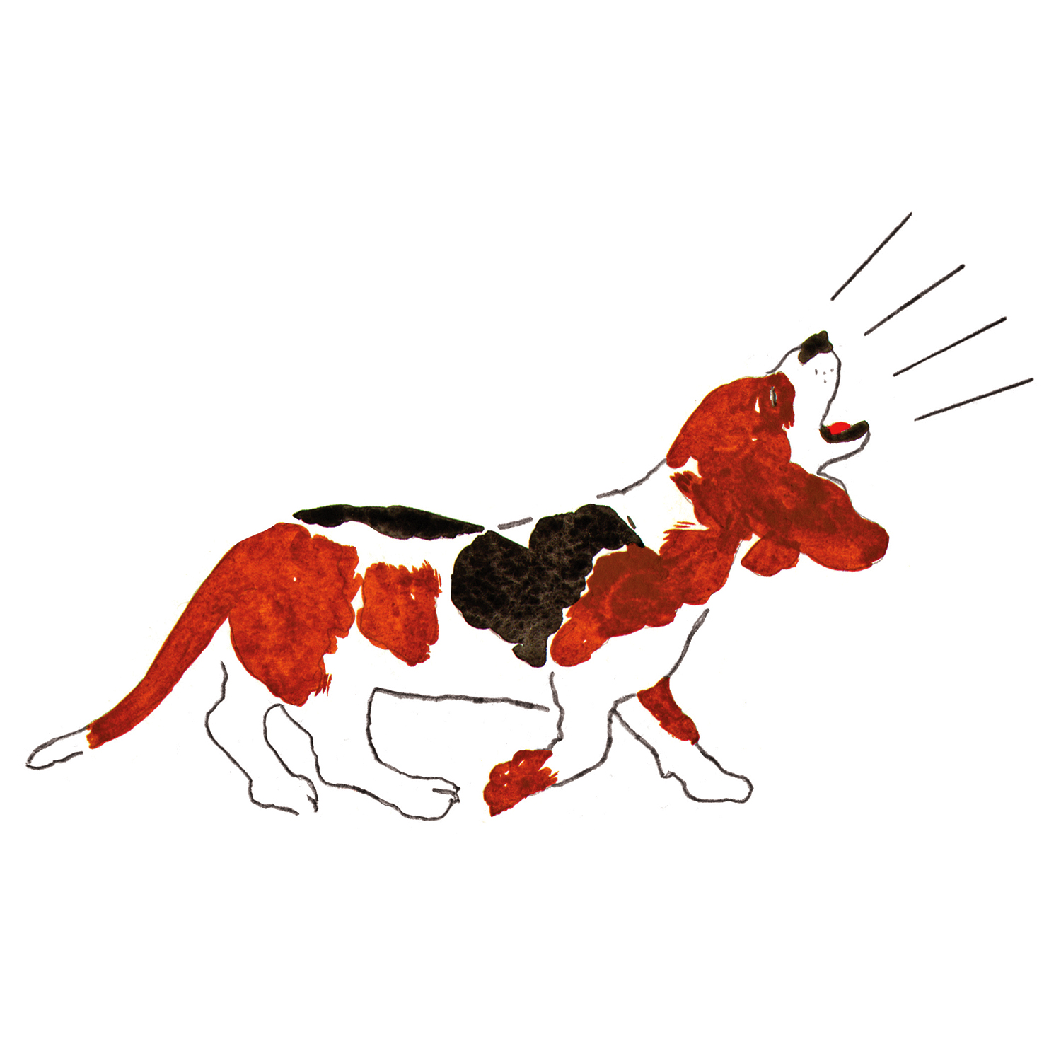 Barking Basset Hound  issue 18 2016