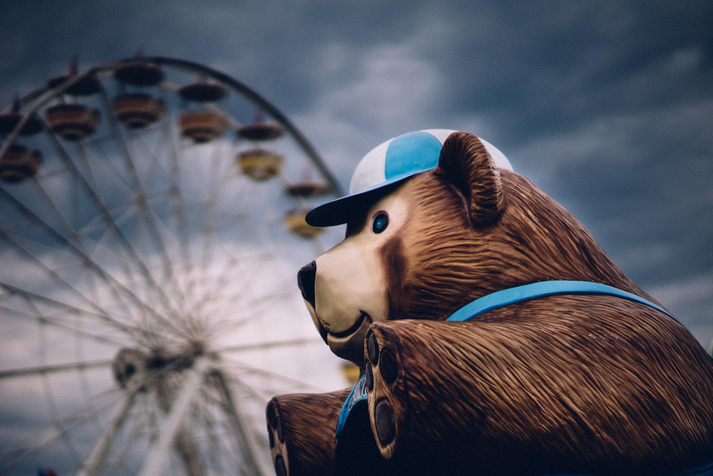 Fair Bear.jpg
