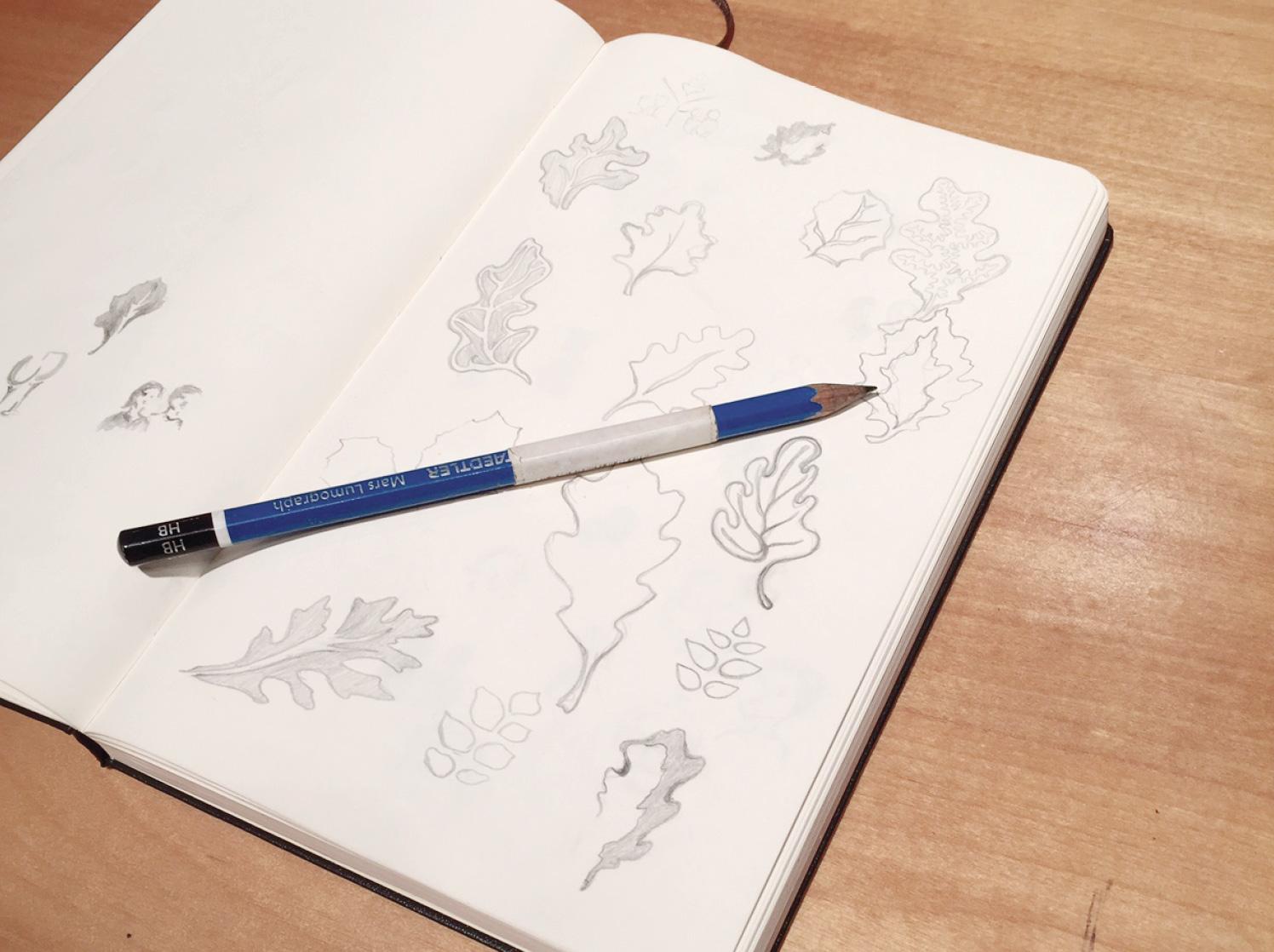 sketch-2.jpg