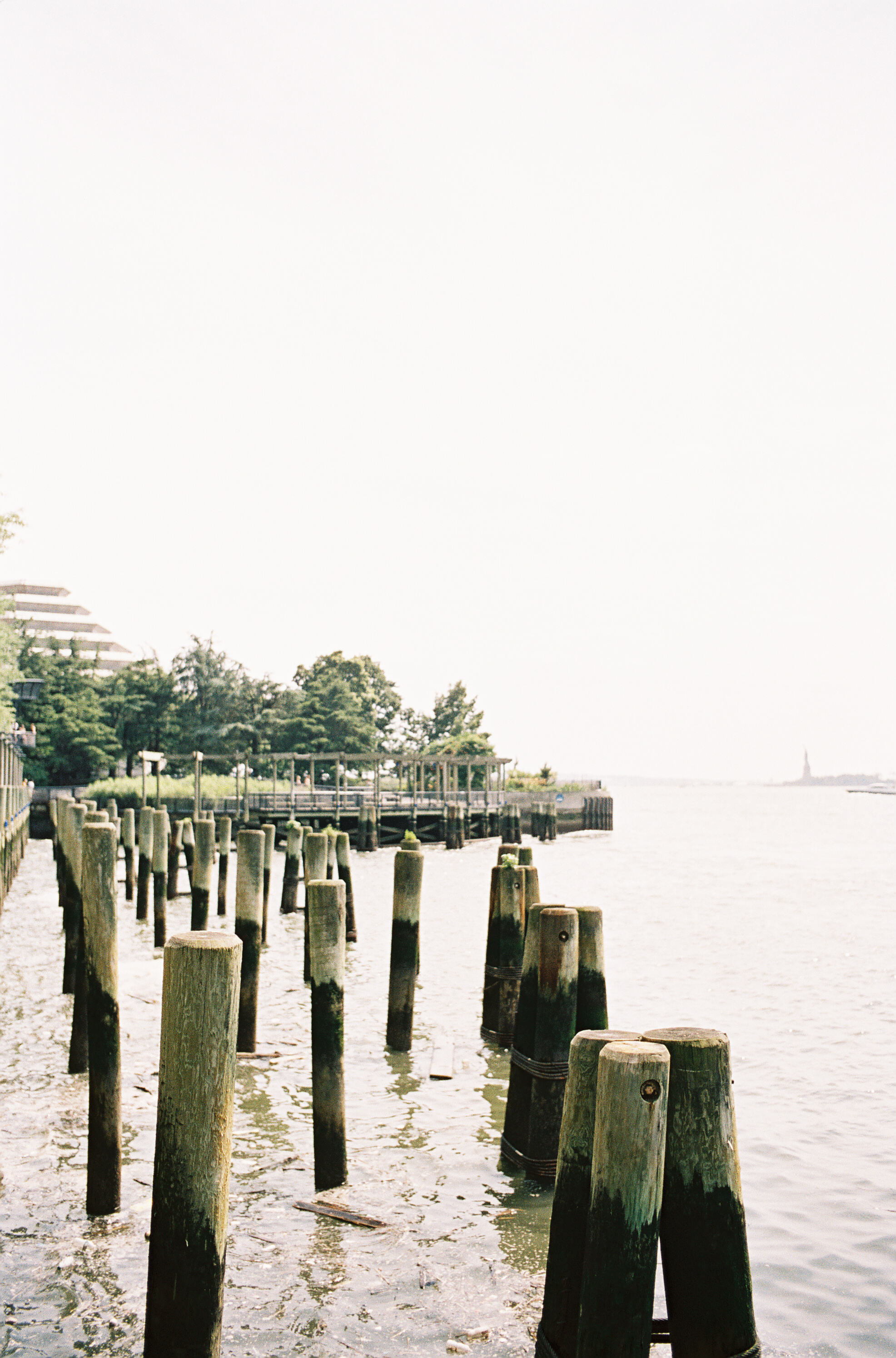 taking-in-new-york-12.jpg