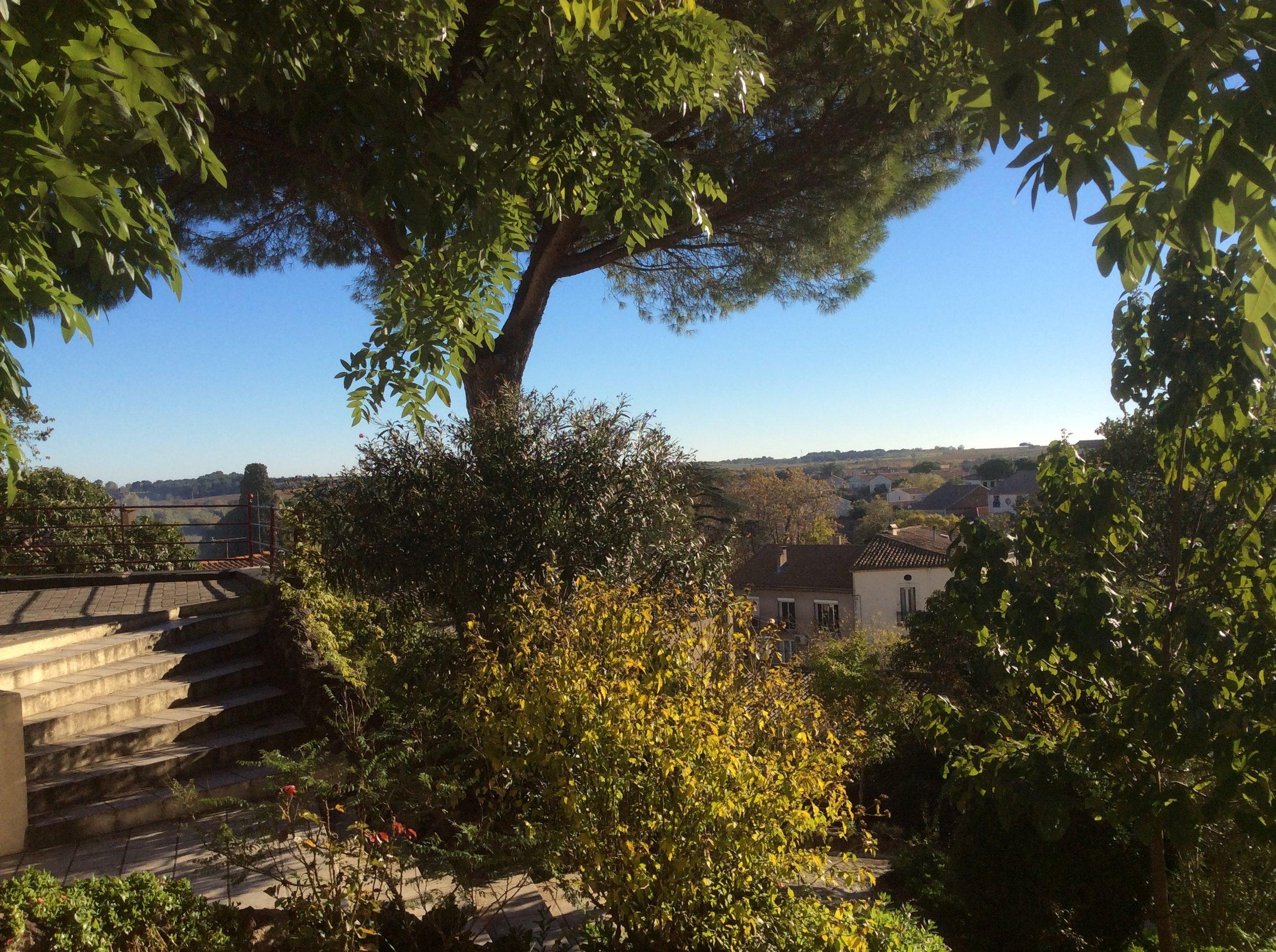 Nov scene from the balcony.jpg