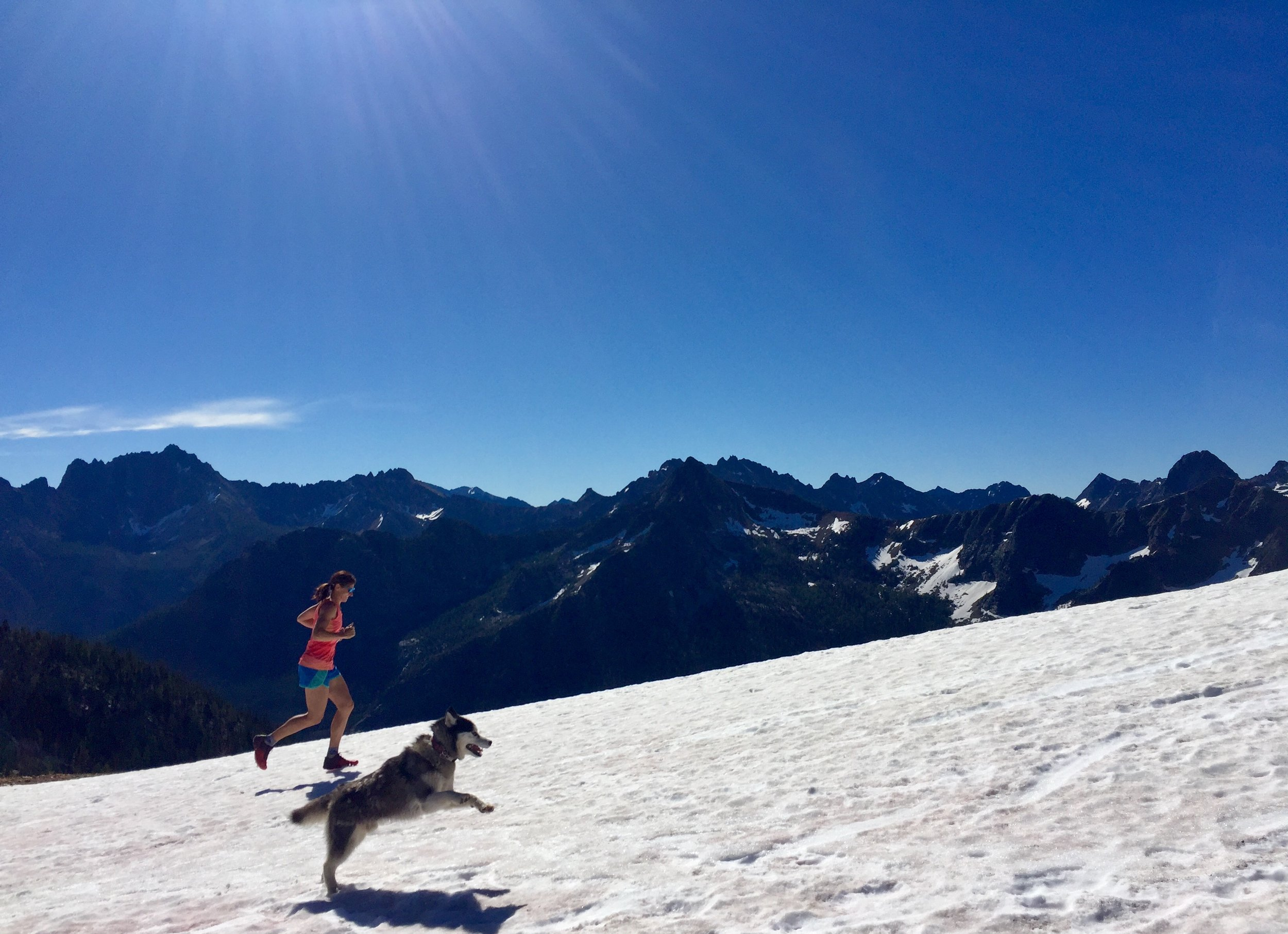 You too can enjoy running as much as a husky loves snow. Liz Walker loving every second, at Cutthroat Pass.