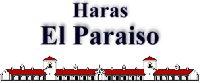 logo-haras.jpg