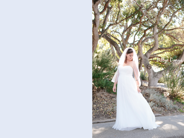 Santa Barbara Wedding - dip14.jpg