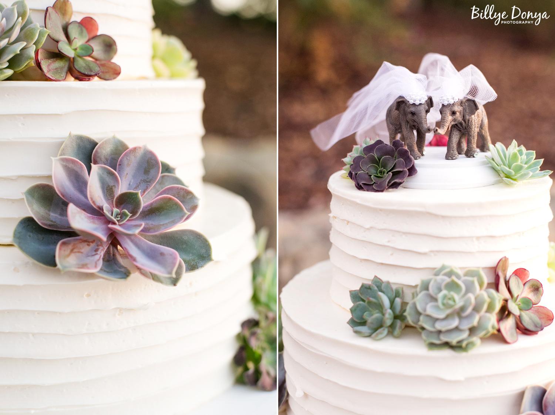 Santa Barbara Wedding Photographer - dip83.jpg