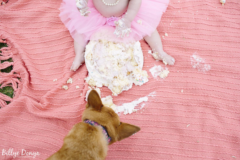 Camarillo Baby Photographer - Taylor-14.JPG