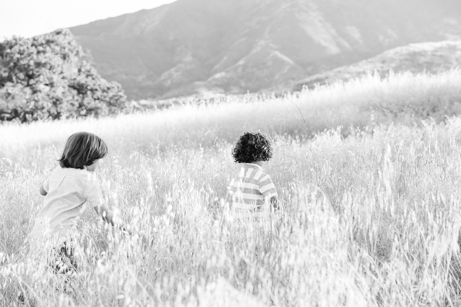 Los_Angeles_Family_Photographer-0223.jpg