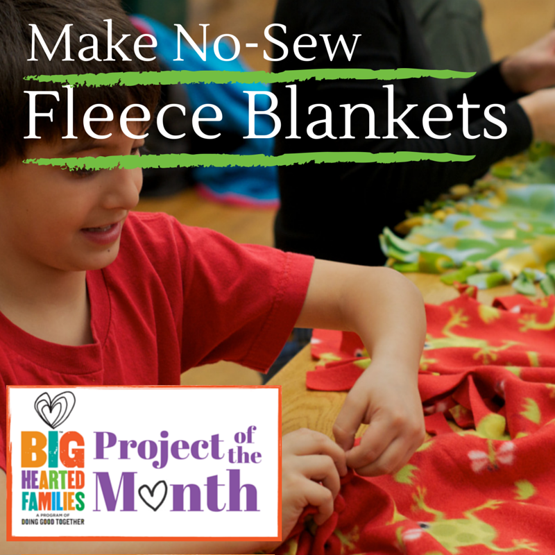 November's Project of the Month
