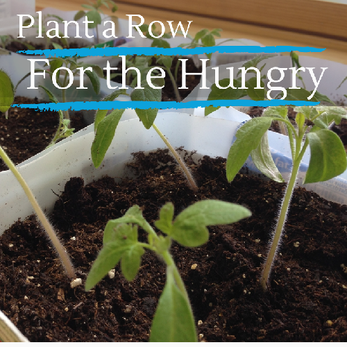 Plant a Row for the Hungry