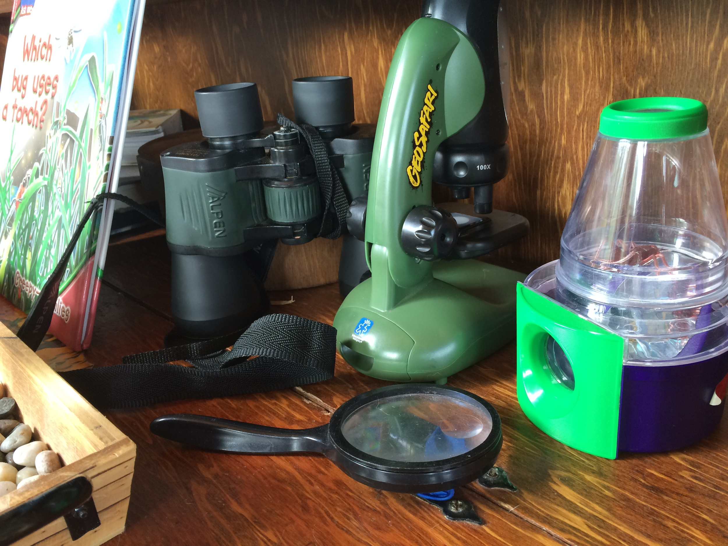 Make room for treasures from nature walks (a box of sticks, a bowl of rocks), field guides, binoculars, a bug net, etc. to encourage budding scientists.