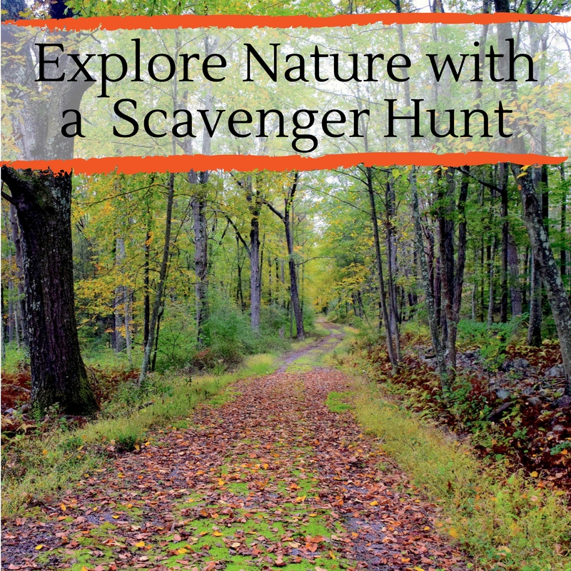 nature scavenger hunt no logo.jpg