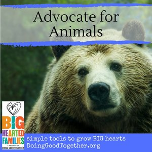 Advocate for Animals.jpg