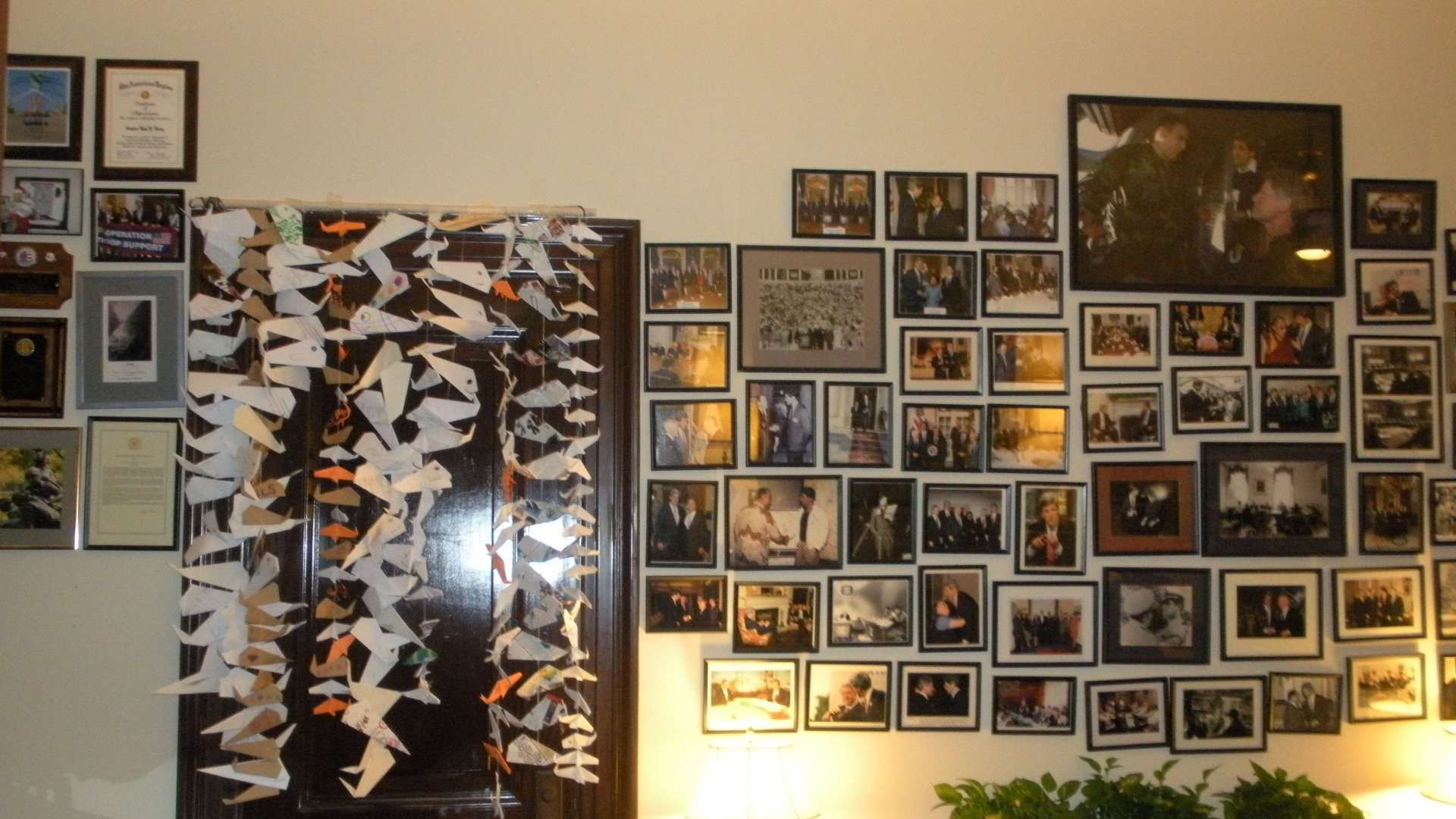 Senator Kerry's Origami Whale Curtains 019.JPG