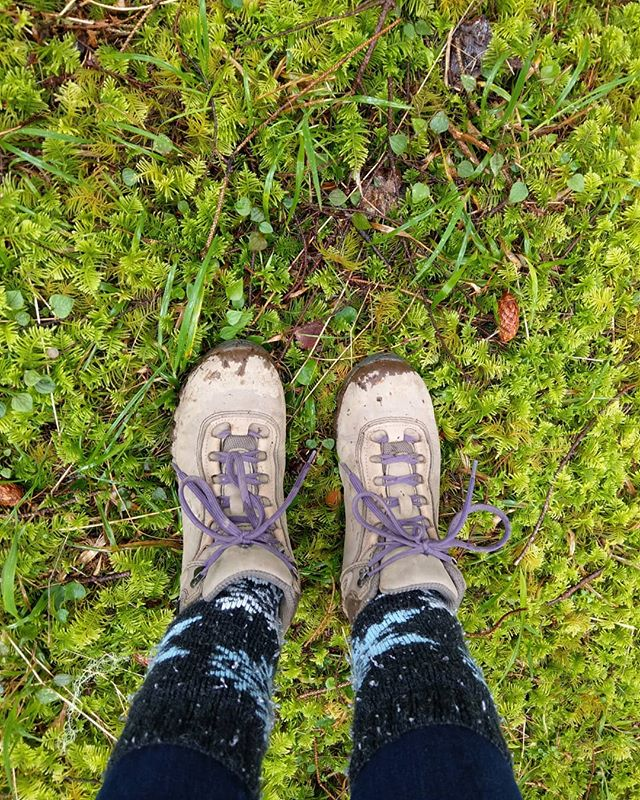 Went in search for something green today. Happy St. Patrick's Day! . . . #livingwithlocks #travel #traveloregon #oregonnw #oregon #stpatricksday #green #moss #forest #adventure #pnw #pacificnorthwest #coast #ocean #hiking #trailhead #travelphotography #photography #naturephotography #nature #nature_lovers #shoes #life #yachats #coastal #path #outside #gooutdoors #love #outdoors