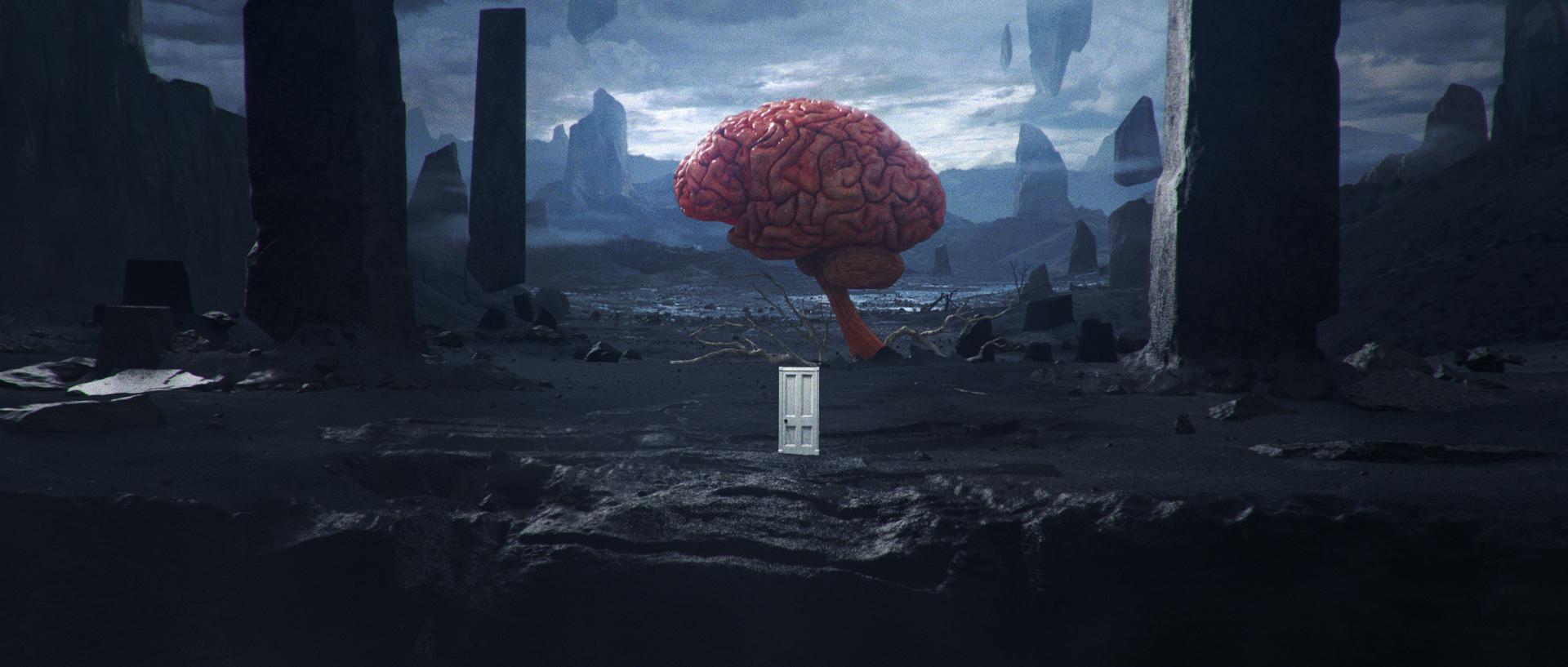 brainscape.jpg