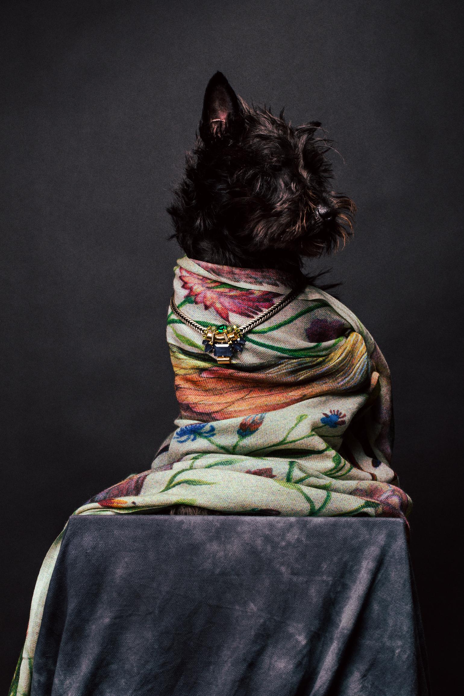 scarf - Paul Smith / necklace - Rada