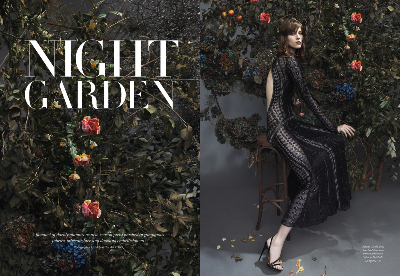 HB0614-Night-Garden-1.jpg