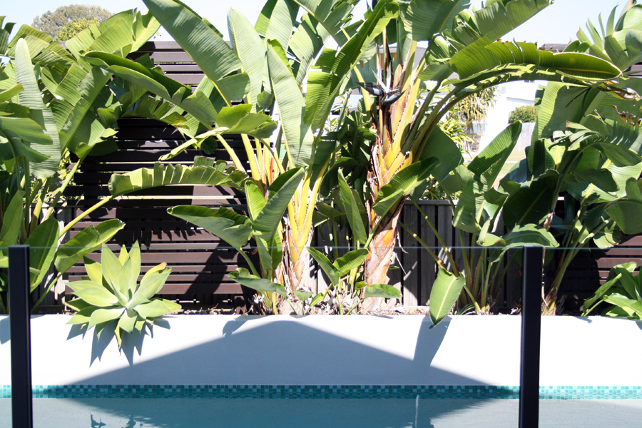 outside pool sml.jpg