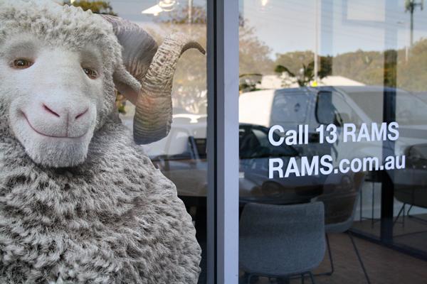 Office Rams sml.jpg