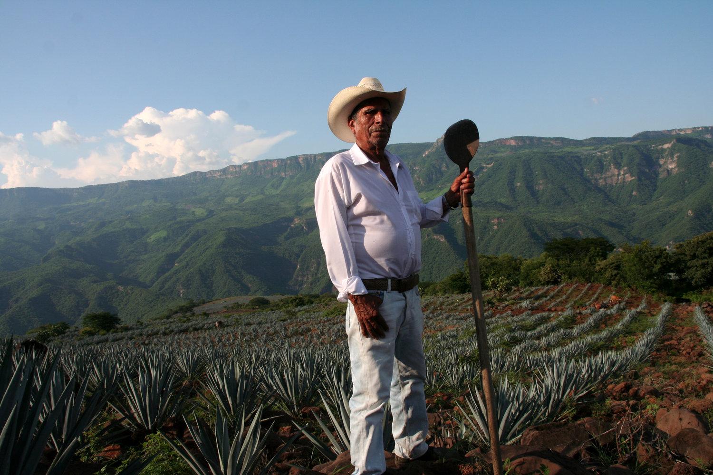 El Jimador, Jalisco Mexico. PHOTO: Zach Shapiro.