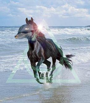 Dolphinhorse (2012)