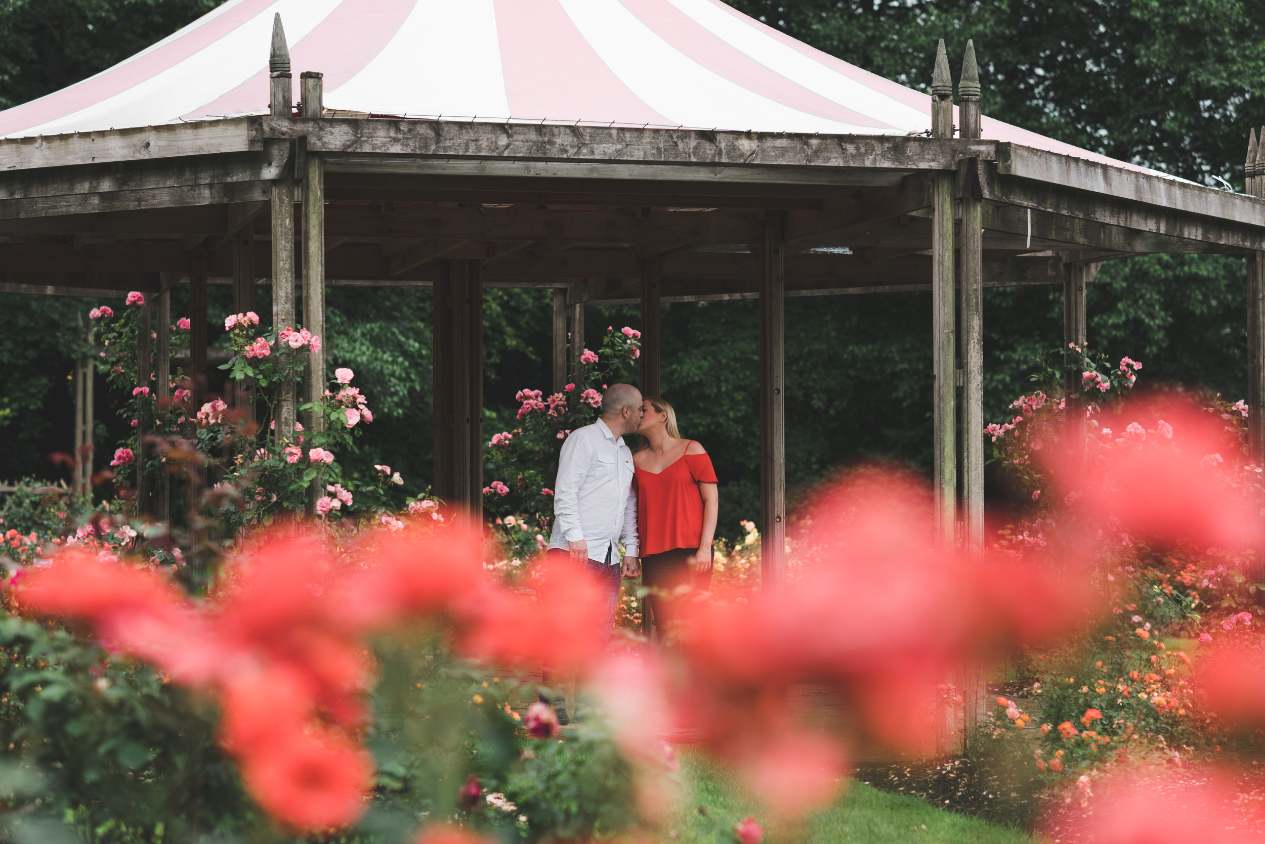 Engagement_Photo_Belfast_Sir_Thomas_and_Lady_Dixons_Park