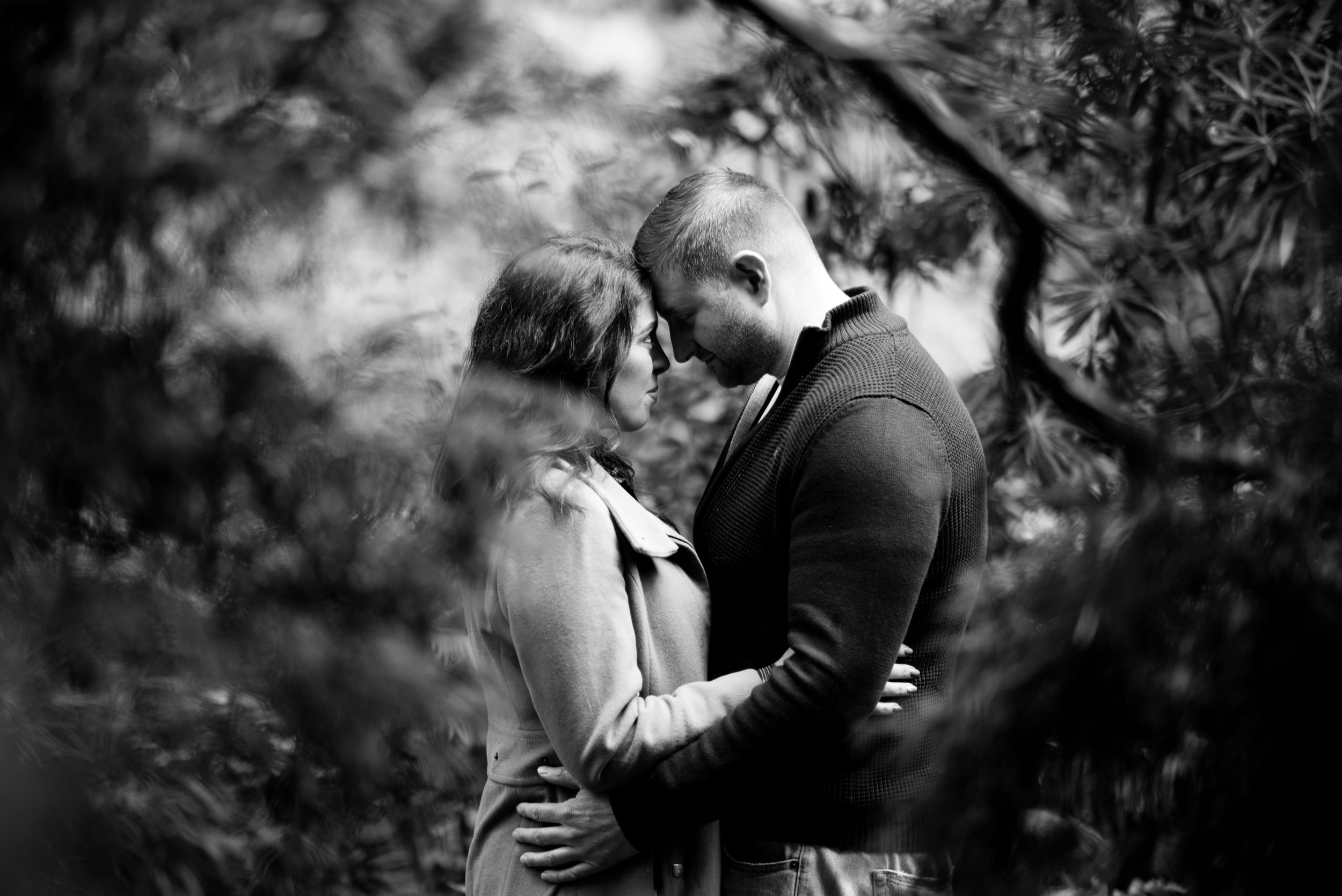 Pure Photo N.I engagement session at botanic gardens in Belfast