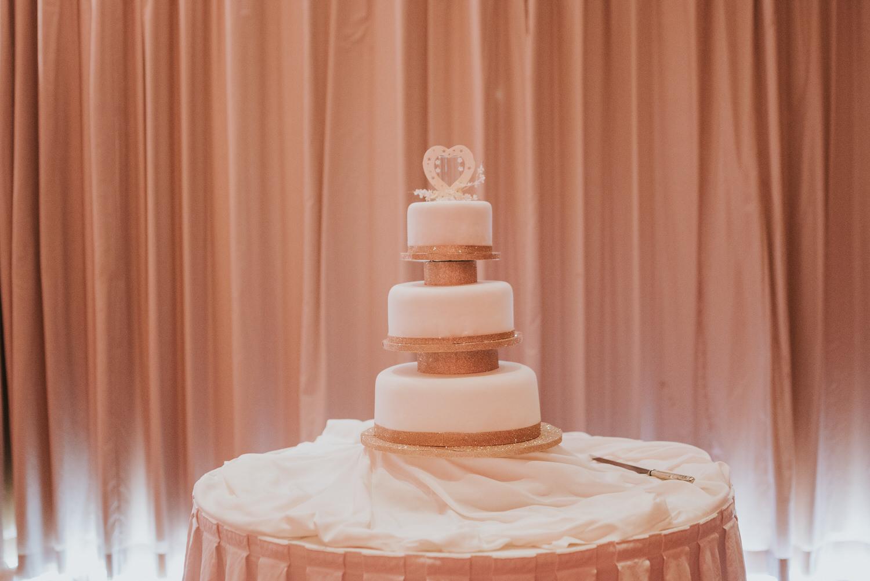 Stormont Hotel Wedding 82