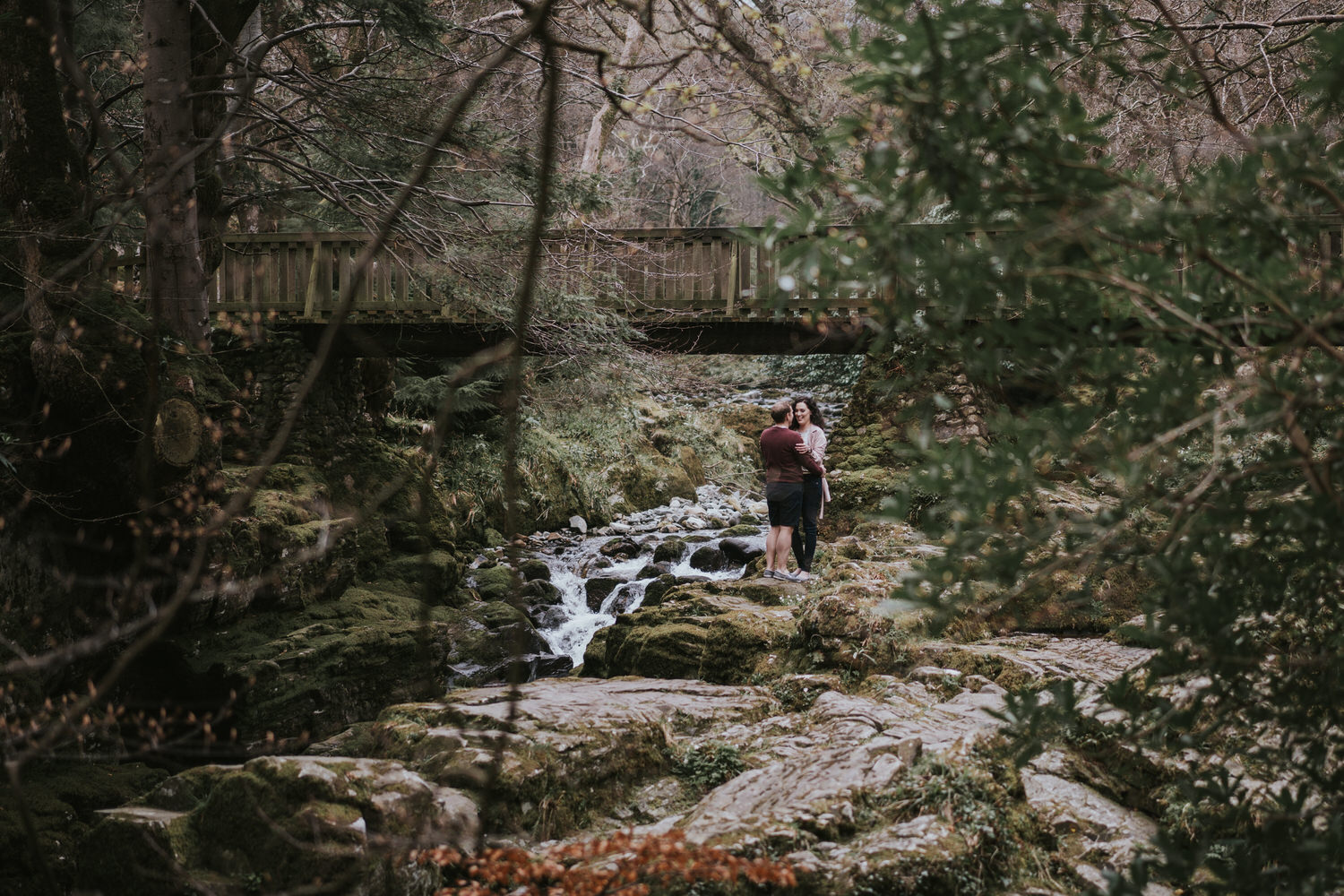 Tollymore Forest Park Engagement photos 04