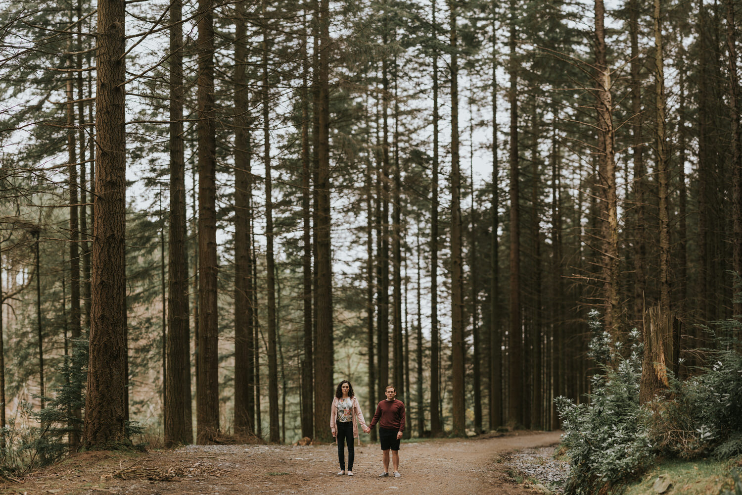 Tollymore Forest Park Engagement photos 27