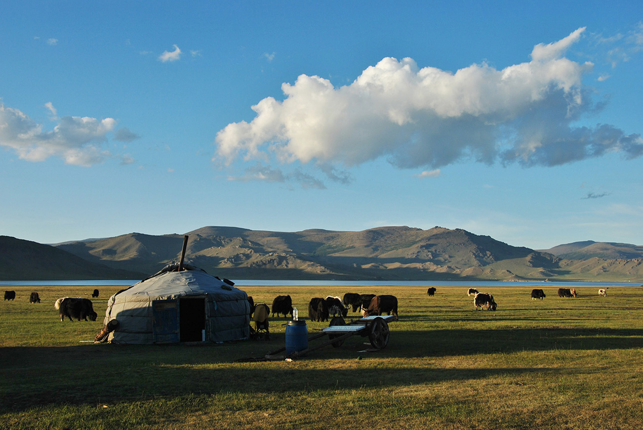 Visiting a herder family in the Arkhangai region of Mongolia, 11th August 2014