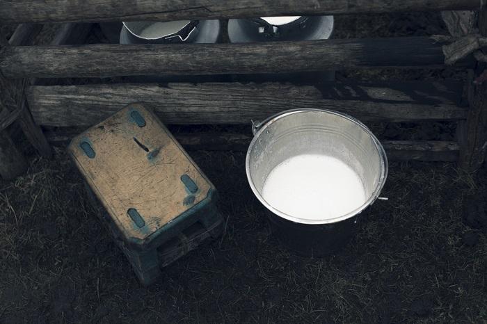 Yak milk