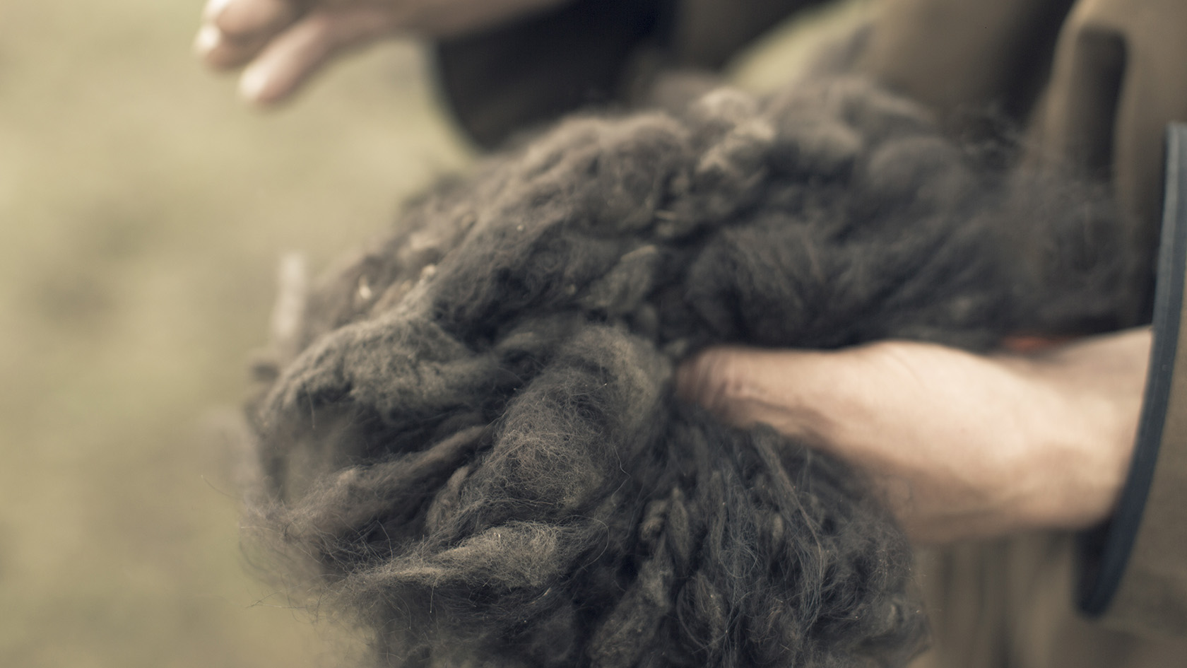 After combing, the fibres are hand-sorted into different grades, washed in gentle soap and water and dried, before being spun into Tengri Noble Yarns and Fabrics.