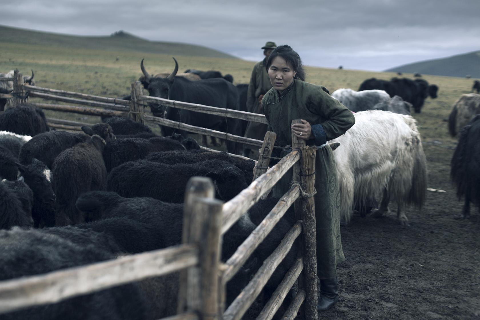 Tengri_Mongolian_woman_herder.jpg