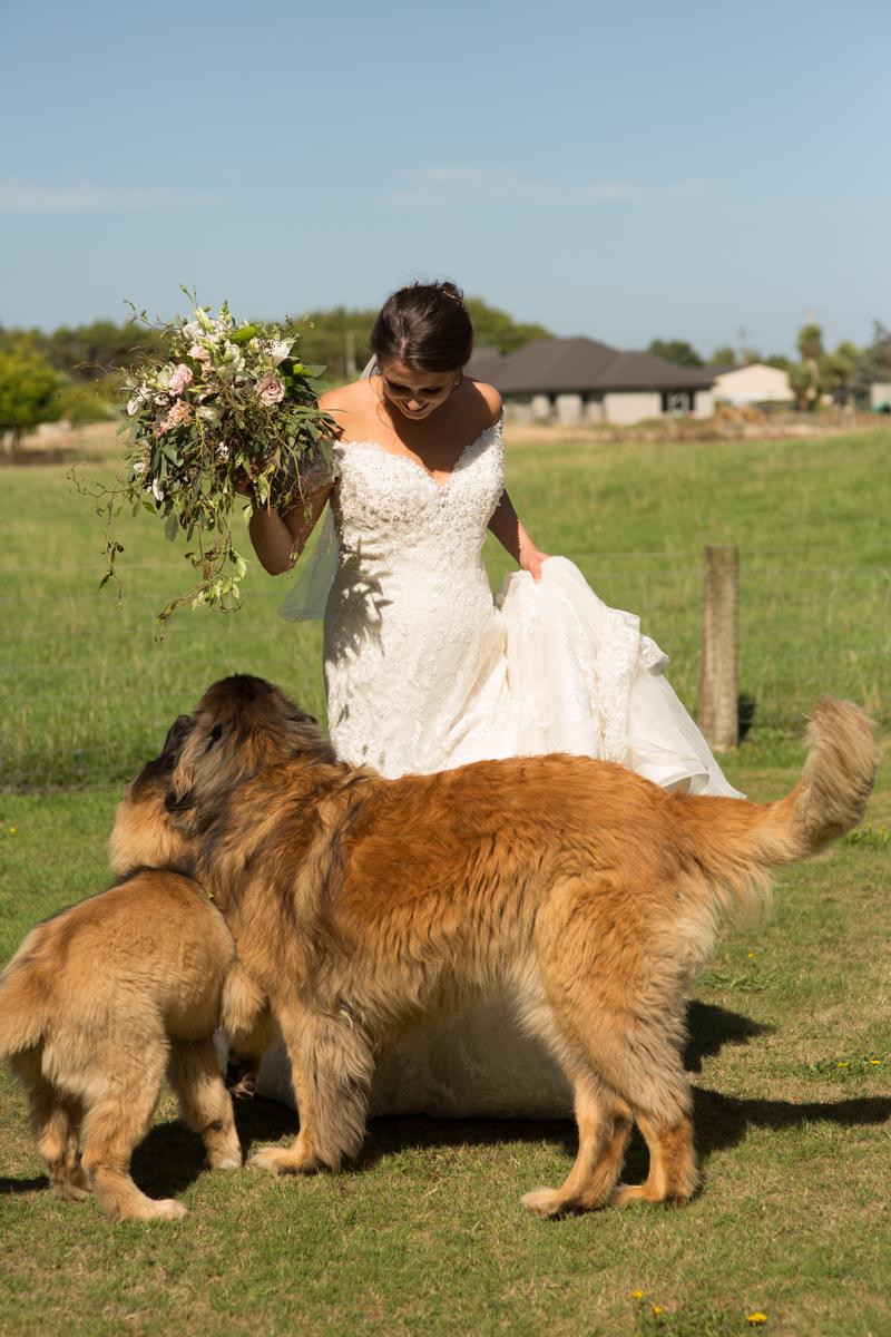nz wedding photographer invercargill-19.jpg