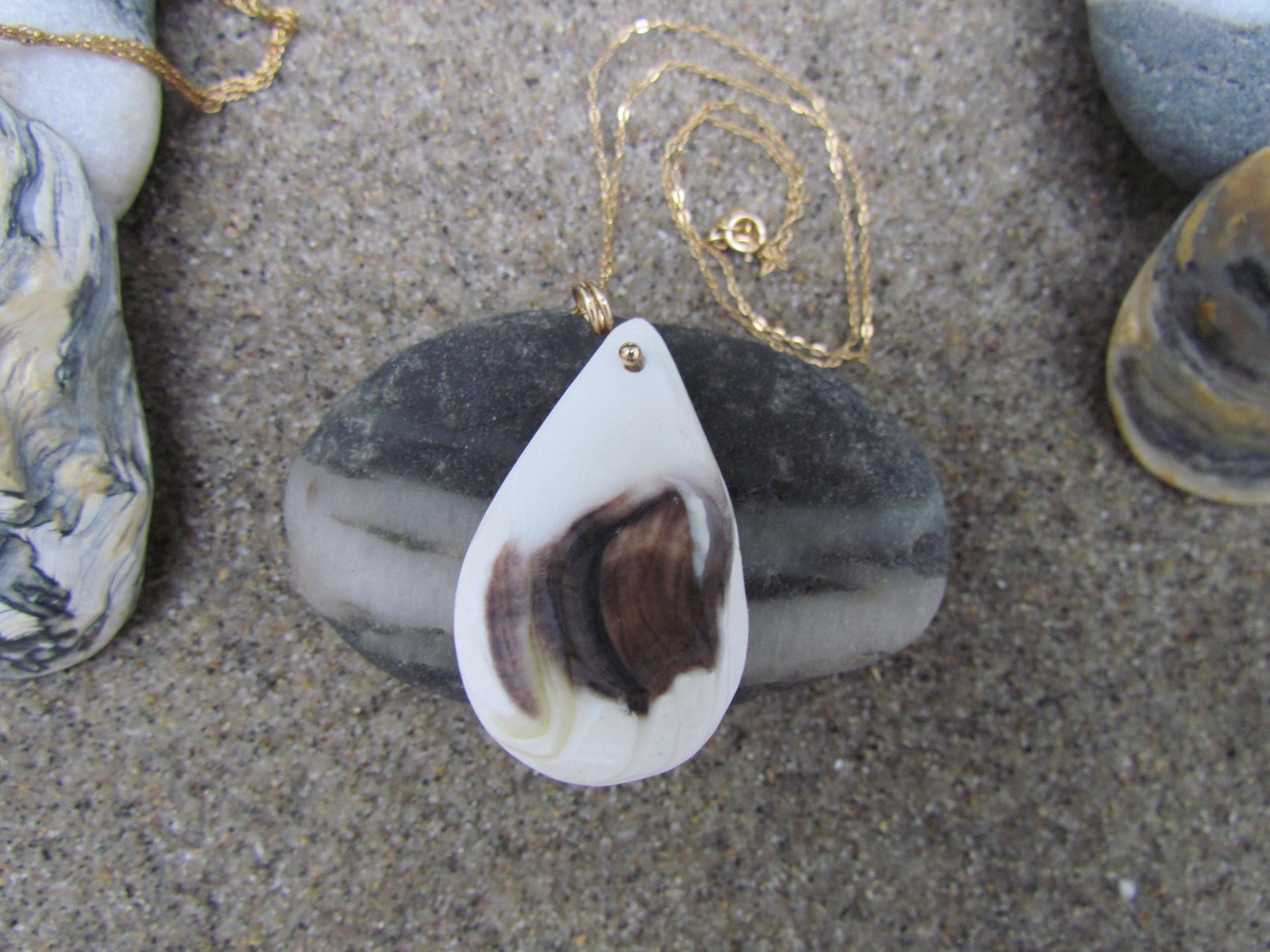 Wellfleet oyster shell pendant