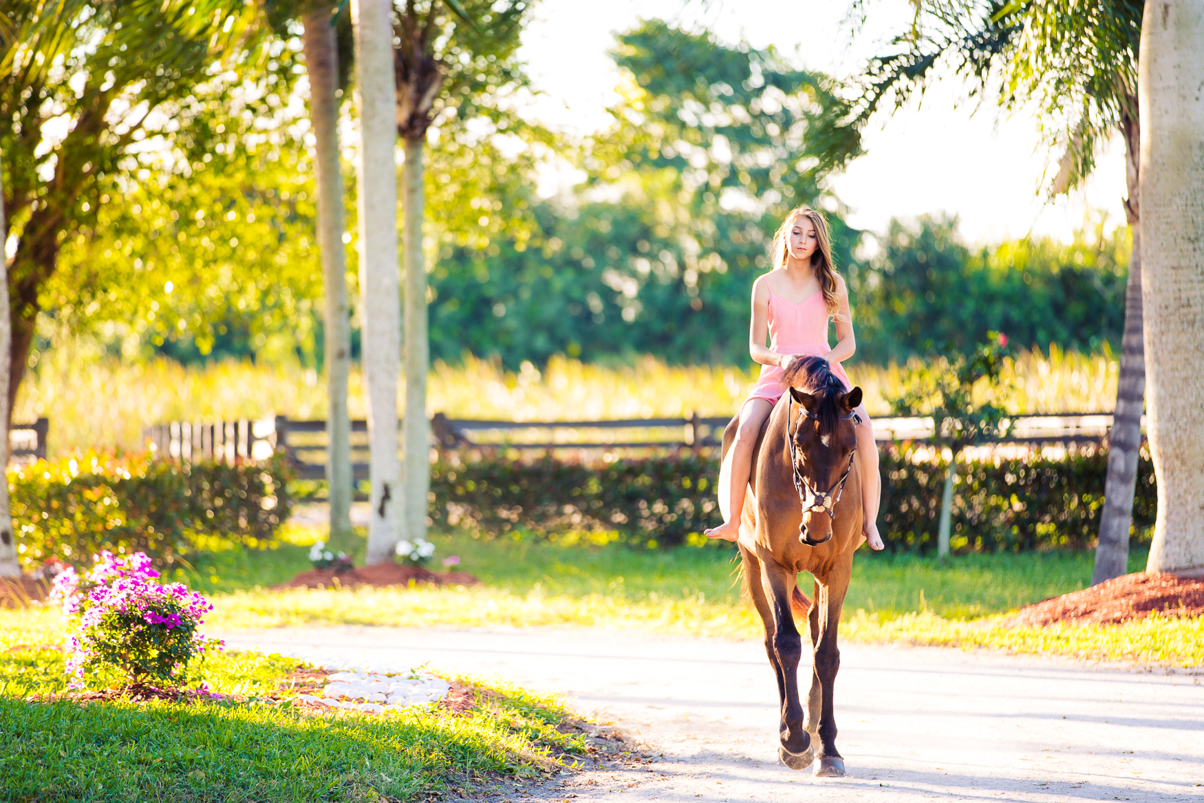 EquestrianPortraitPhotography-2.jpg