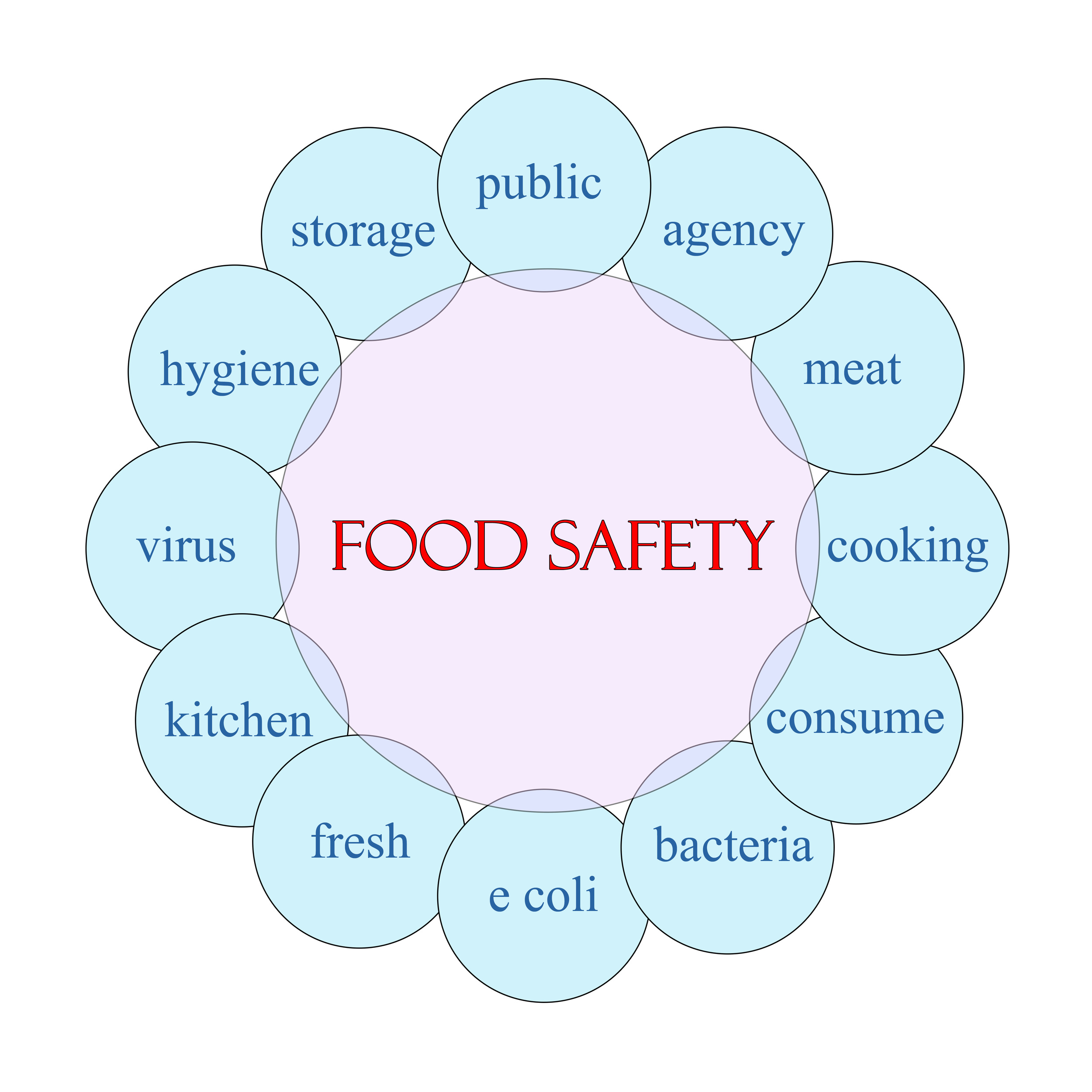 Food Safety Word Circle.jpg