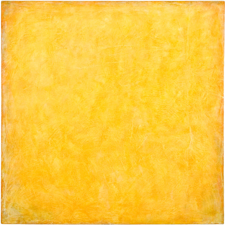 Untitled (field #2), 2005