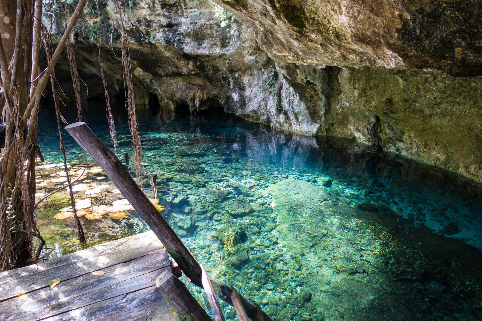 Cenote in Tulum, Mexico ( Flickr )