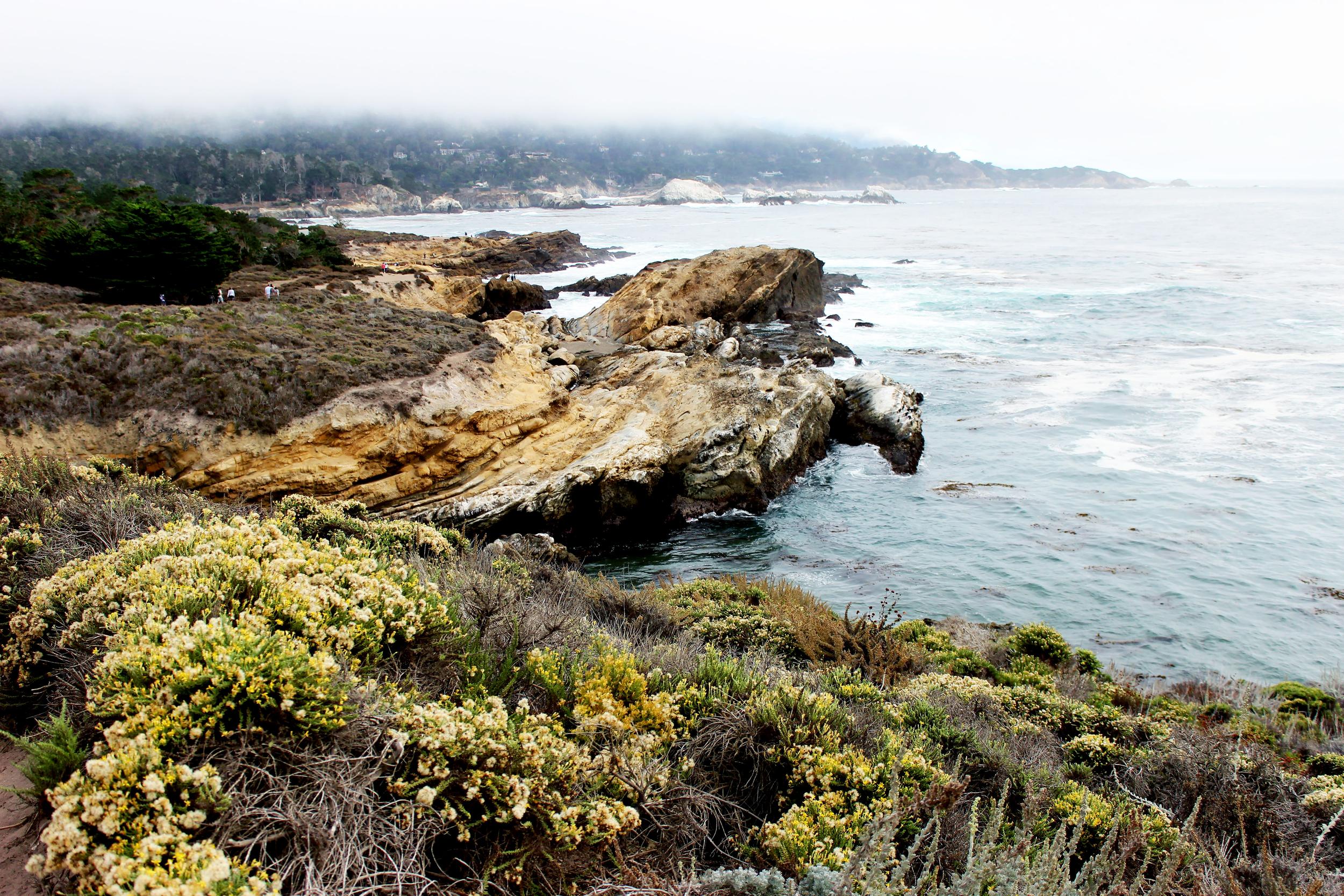 Point Lobos, Monterey Bay