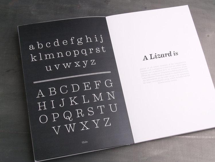 booklet 6.jpg