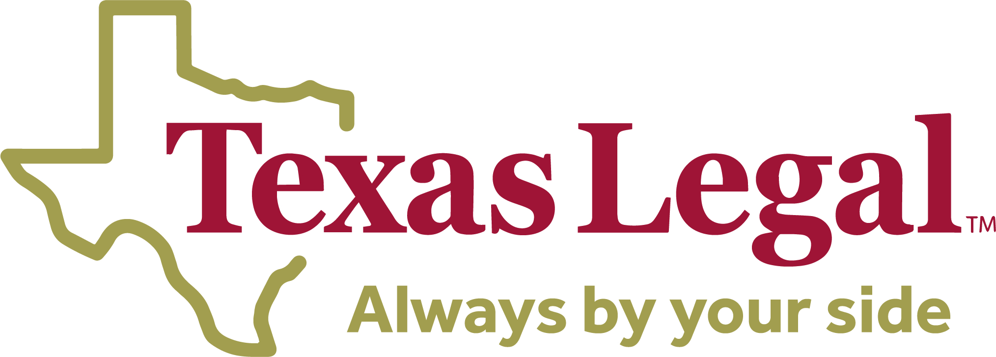 electronic Texas Legal Logo 2.jpg